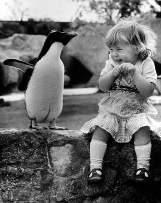 Penguin and Girl