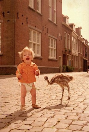 Crying child walking a juvenile big bird